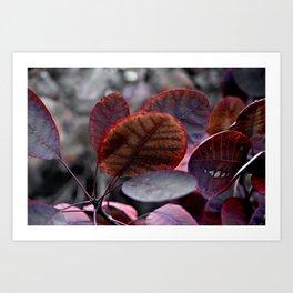Bleeding Red Leaves Art Print