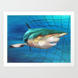Blacktip Shark Net Art Print