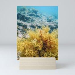 Forest of Seaweed, Seaweed Underwater, Underwater Scene Mini Art Print