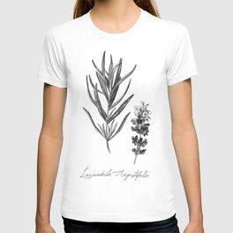 Lavender Botanical Illustration T-shirt