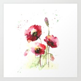 Watercolor flowers of poppy Art Print