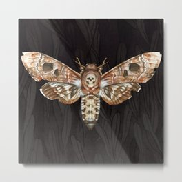 Exaggerated Death's Head Hawkmoth Metal Print