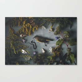 Bird + Snake Canvas Print