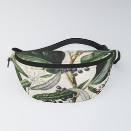 Antique plant Griselinia lucida drawn by Sarah Featon (1848-1927) Fanny Pack