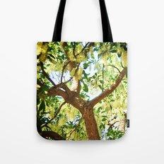 Shining Tree Tote Bag