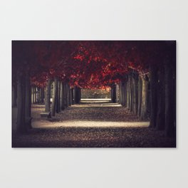 Red colors of autumn, surreal photo, red trees, alley in a park Canvas Print
