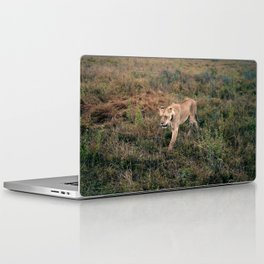 Lone Lion. Laptop & iPad Skin