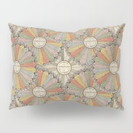 Math Genius Pillow Sham
