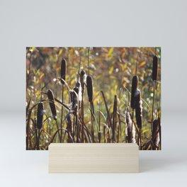 Lovely Common Bulrush plants (Typha latifolia) Mini Art Print