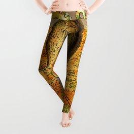 Vintage Golden Octopus Leggings