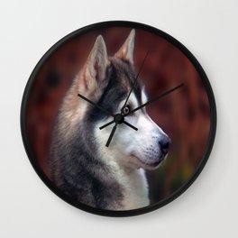 brown eyes Wall Clock