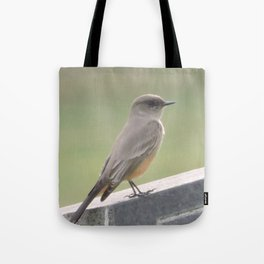 Catcher of the Fly Tote Bag