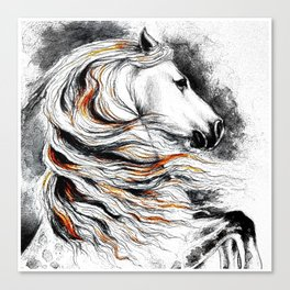 Dark Beauty Horse Canvas Print