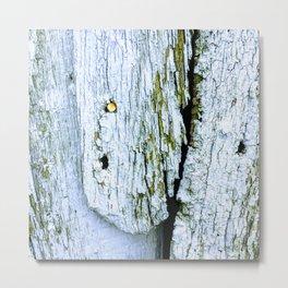 Weathered Barn Wall Wood Texture Metal Print