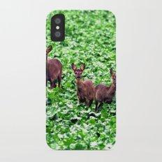 deers in the field. Slim Case iPhone X