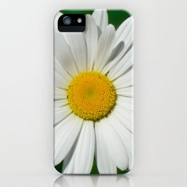 Daisy Macro White 251 iPhone Case