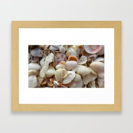 shell collage Framed Art Print