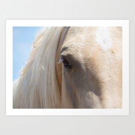 Palomino Horse Face Art Print