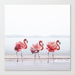 The Pink Dance Canvas Print