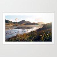 Nortwest Circuit, Stewart Island, New Zealand (P7130370) Art Print