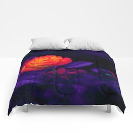 Ultra Violet and Red Rose Bud Comforters