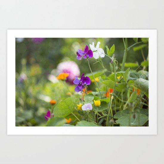 Summer Flowers colorful green meadow Art Print
