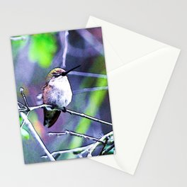 Sleeping Hummingbird. © J&S Montague. Stationery Cards