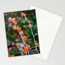 Romantic Desert Globemallow Flowers Stationery Cards