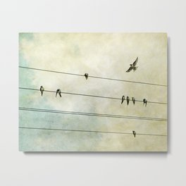 Spread My Wings And Fly Metal Print