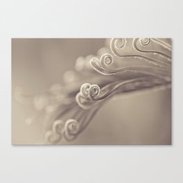 Opening Canvas Print