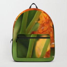 Raindrops on an Orange Flower Backpack