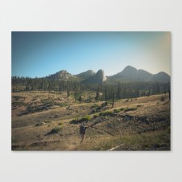 DAY TWO Canvas Print