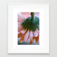 blush Framed Art Prints featuring Blush by The Dreamery