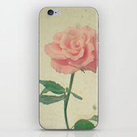 blush iPhone & iPod Skins featuring Blush by Cassia Beck