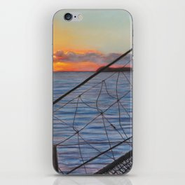 To Swim with Dolphins iPhone Skin