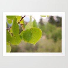 Aspen Green Art Print