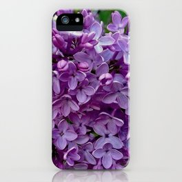 Lilac Blooms iPhone Case