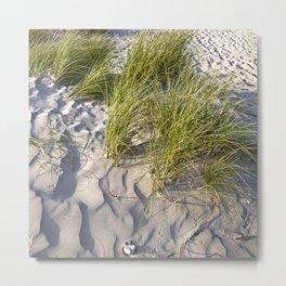 Sand Dune of Denmark Metal Print