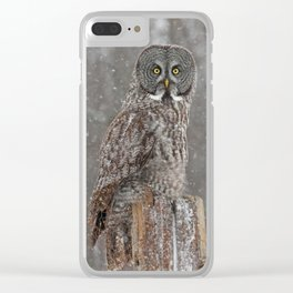 Flurries in the forecast Clear iPhone Case