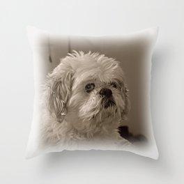 Denali - Loyal Lap-Dog Throw Pillow
