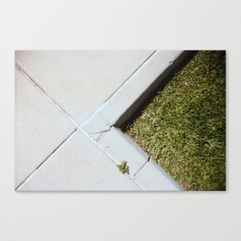 Marks the spot  Canvas Print
