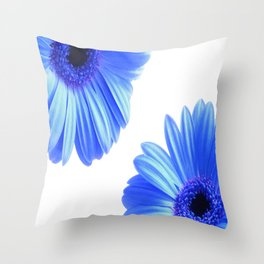 Blue Gerbera Flowers Throw Pillow