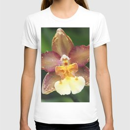 Longwood Gardens Orchid Extravaganza 73 T-shirt
