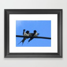 Sullu (swallows) Framed Art Print