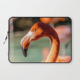 Eye of the Flamingo Laptop Sleeve