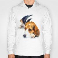 beagle Hoodies featuring Beagle Bailey by MadDog