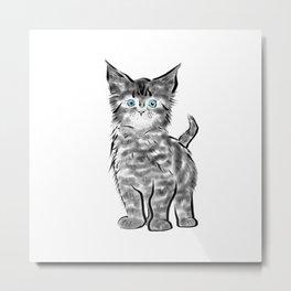 Scruffy Maine Coon Kitten Metal Print
