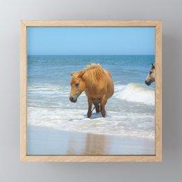Watercolor Horse 48, Assateague Pony, Assateague, Maryland, Watery Relief Framed Mini Art Print