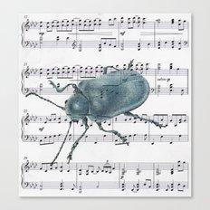 Music Beetle Canvas Print