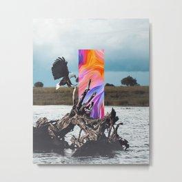 H/26 Metal Print